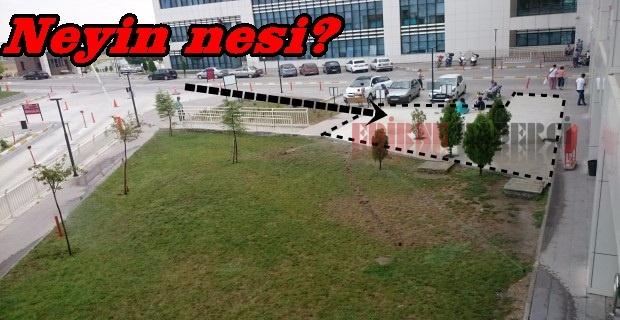 Hastane yeşile karşı!