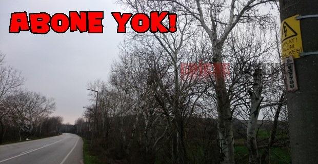 Bu yol kimin ?