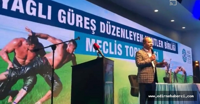 Edirne Belediyesi, Kırkpınar'ı Bilim Kurulunun rehberliğinde düzenlenmeyi istiyor