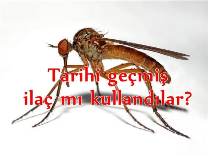 Sivrisinekte yeni bir iddia!