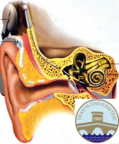TÜ'de biyonik kulak ameliyatı yapıldı!